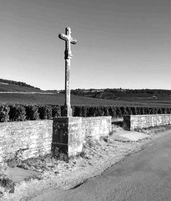 Legendary Domaine de la Romanée-Conti, the cross in the vineyard ©Baghera/wines