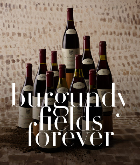 """Burgundy fields forever"" — room auction by Bagherawines, june 20, 2021"